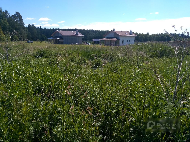 убойные доводы фото деревни пестенькино владимирской области что