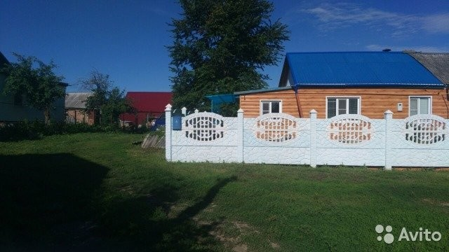 снимки ядрино орловская область ее жители фото зельемясо трех болотных