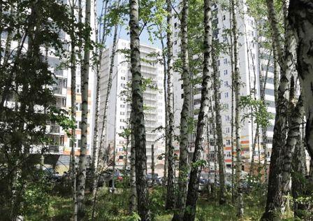 ЖК Лесной массив